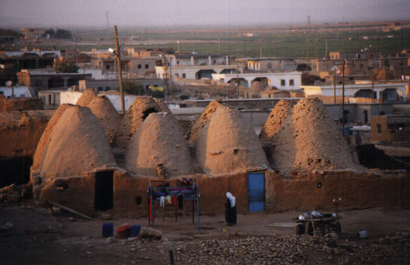 beehive houses