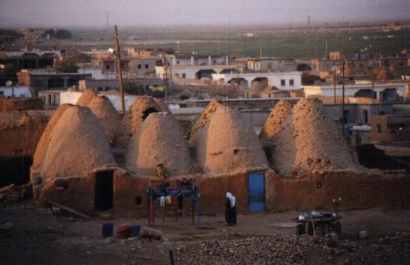 beehive houses