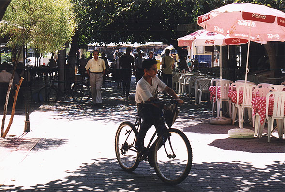 boy riding bike on sunny street