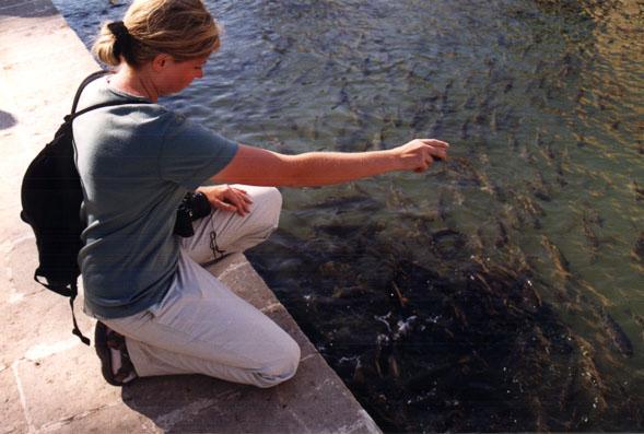 Susanne feeds fish