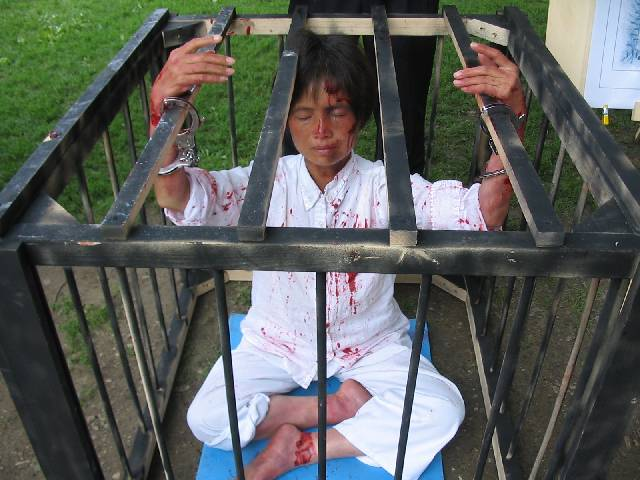 Falun Gong woman in cage